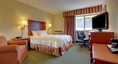 The AmericInn Hotel and Suites Bloomington West king room features residential-style décor.