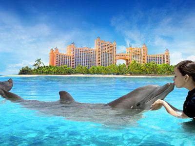 Dolphin encounter at Atlantis