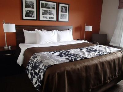 Guestroom at Sleep Inn & Suites West Medical Center in Amarillo
