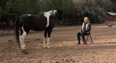 The Equus Experience Method at Four Seasons Resort Rancho Encantado.